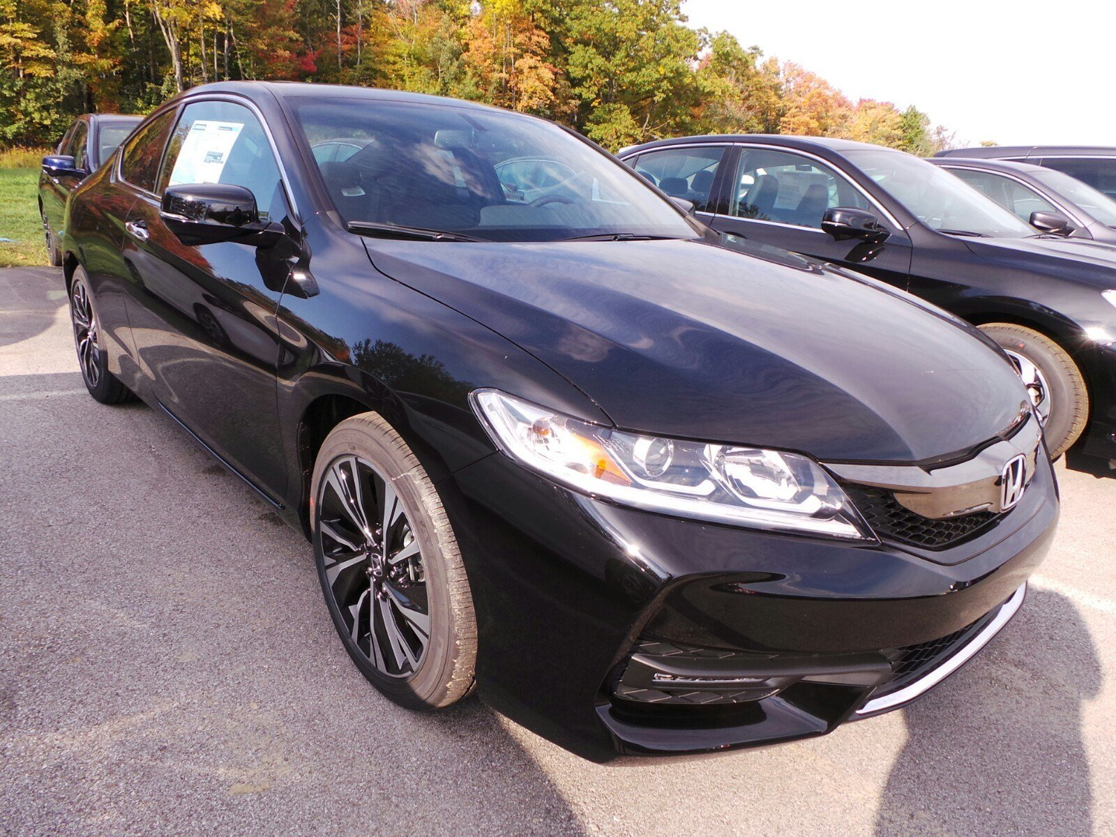 new 2017 honda accord coupe ex l cvt 2dr car in erie. Black Bedroom Furniture Sets. Home Design Ideas